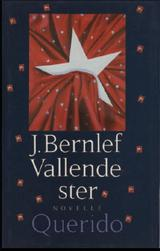 Vallende ster (e-Book)