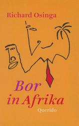 Bor in Afrika (e-Book)